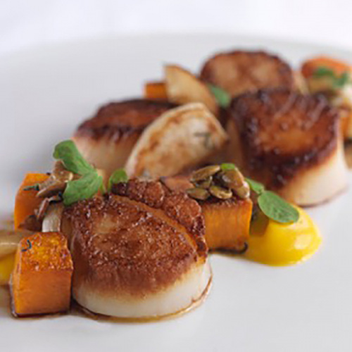 scallops-resized